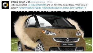 Furry SmartCar